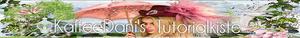 Autorizzazioni Siti/Blog per esecuzioni Tutorial pag 1