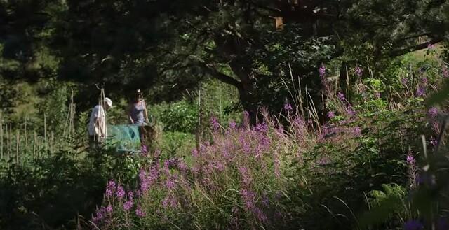 Jardin Jardinier : Des jardiniers du dimanche en Rhône Alpes