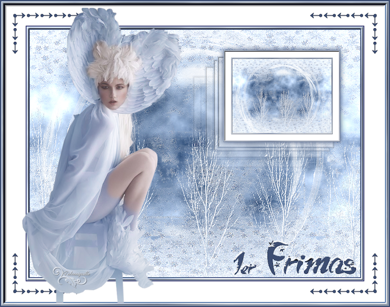 Premiers frimas