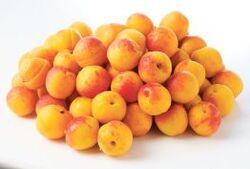 Les cannelés et le clafoutis aux abricots