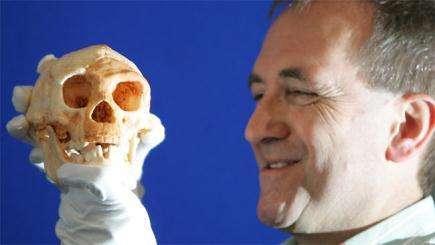 Des crânes extraterrestres ?