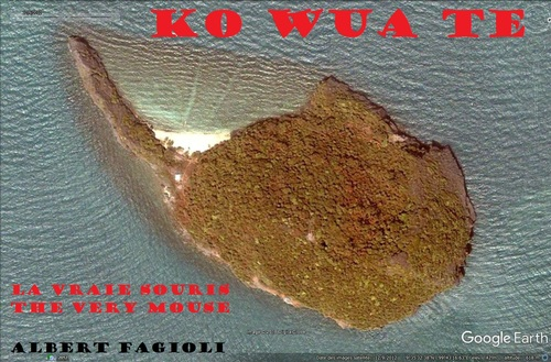 KO WUA TE, la vraie SOURIS (The very MOUSE). (Albert Fagioli) (Photo Google Earth)