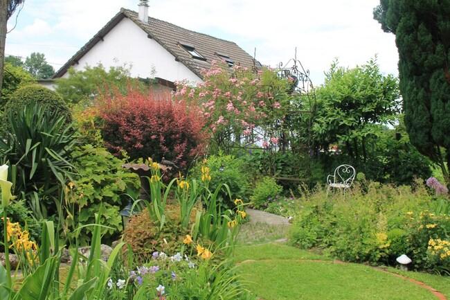 Le jardin des hayures