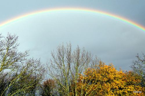 Il pleut! Et l'arc-en-ciel est là!