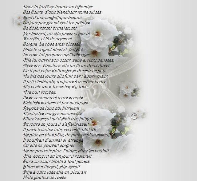 Poesie(10)