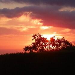 Autres photos de couchers de soleil 974