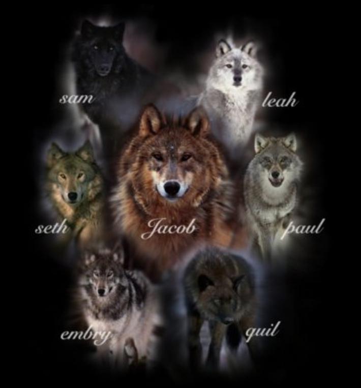 Les loups-garou