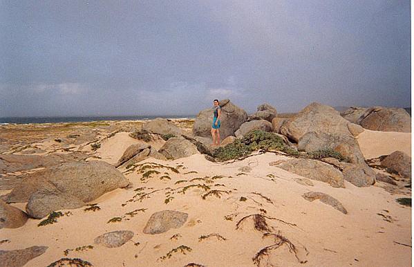 800px-Sand dunes
