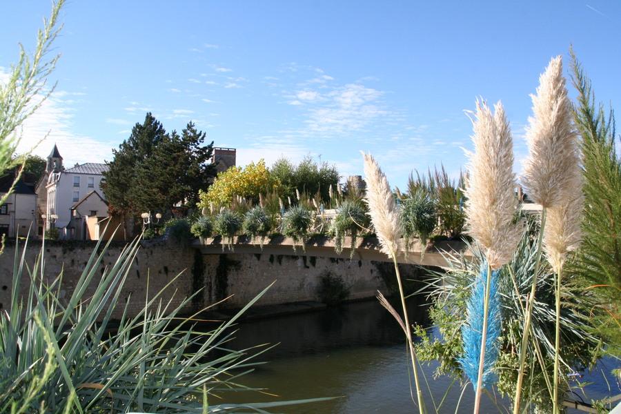 Vendôme et sa moséiculture du bord de Loir