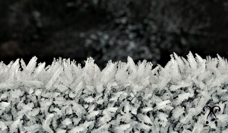 Parade d'hiver