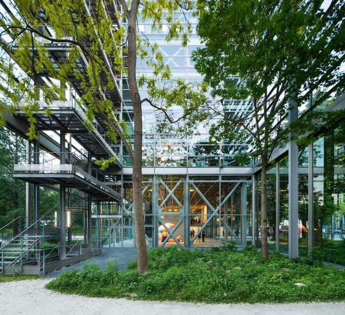 """Fondation Cartier """"Nous les arbres"""""""