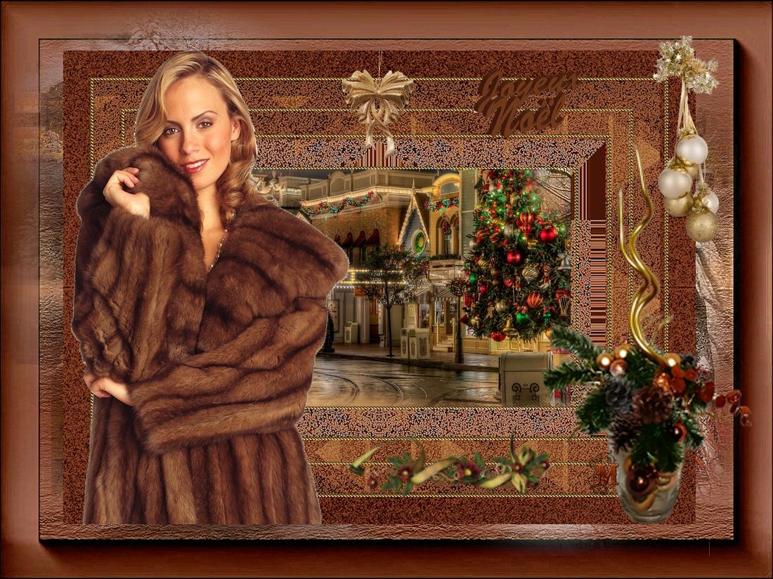Fêtes Noël / Nouvel An