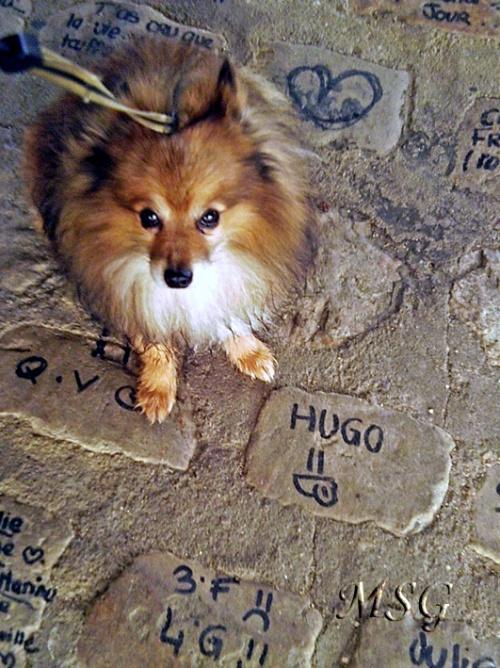 Ugo ? Hugo ?
