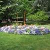 jardin-parc-fleur-massif-haute-825950.jpg