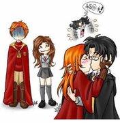 Harry Potter ce qu'il vous faut savoir :