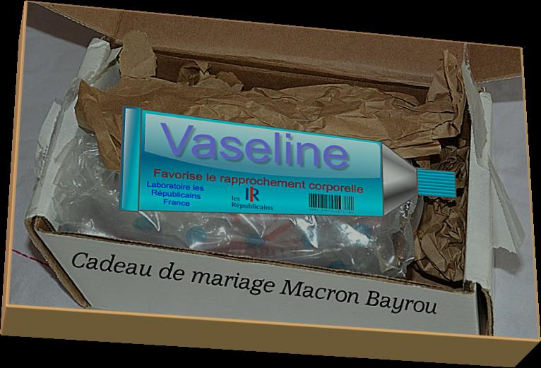 Cadeau de mariage Macron Bayrou (Humour)