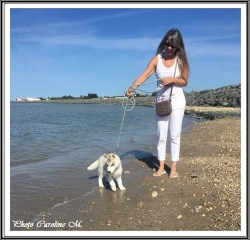 Vacances avec vos Huskys (18 août 2017)