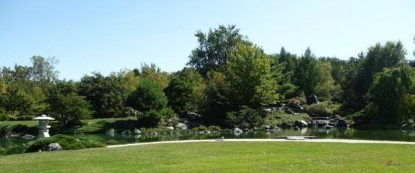Jardin japonais (17)