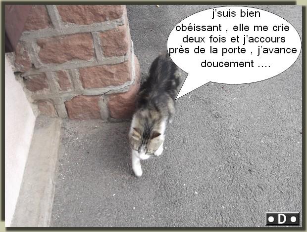 ULYSSE .... l' AVENTURIER !