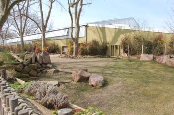 zoo cologne d50 2012 214