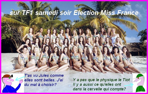 élection Miss France