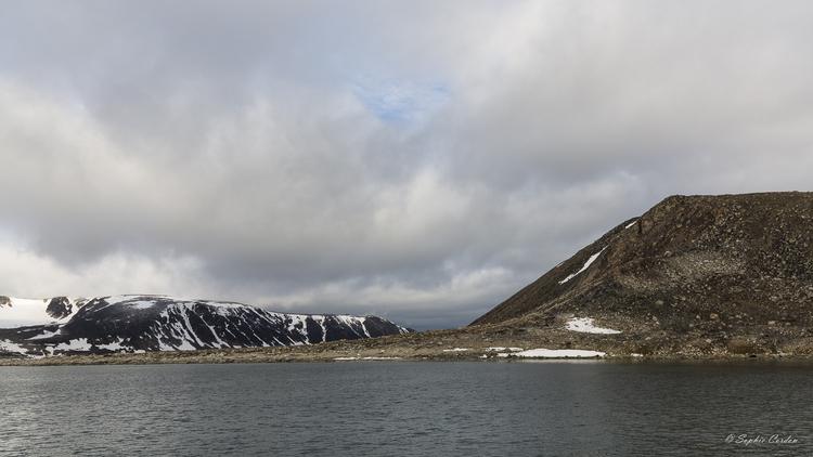Chermsideøya