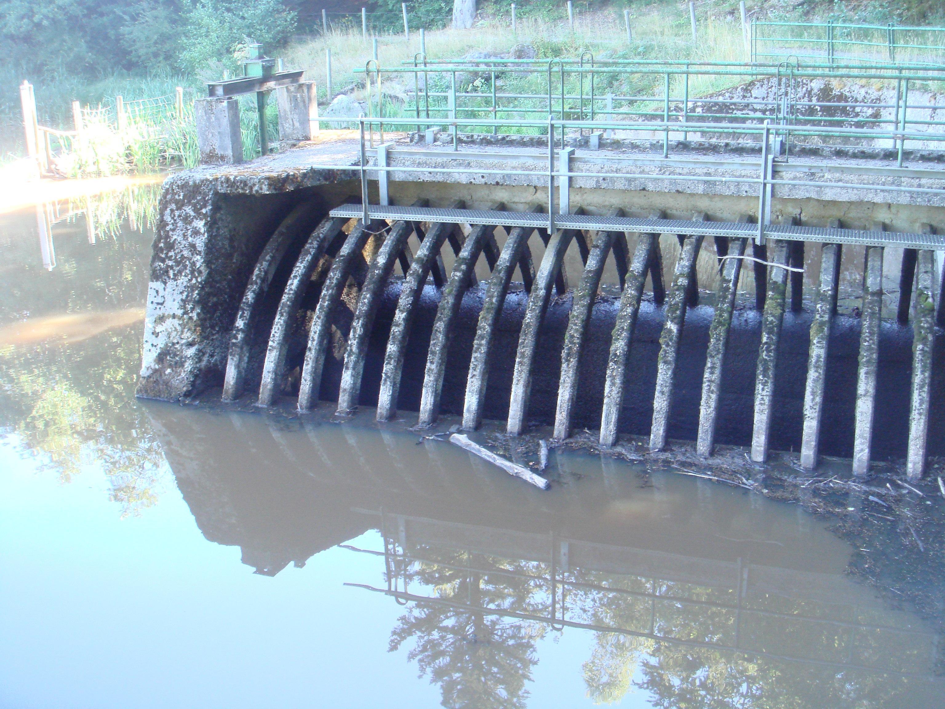 Départ de la dérivation du Tact vers le lac naturel de La Crégut