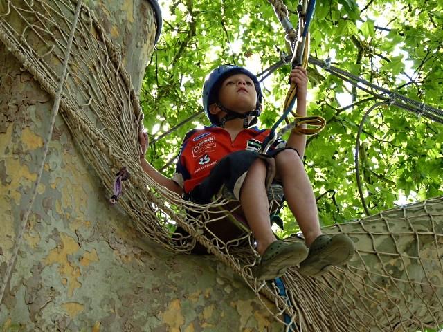 Parcours dans les arbres 4 Metz mp1357 2011