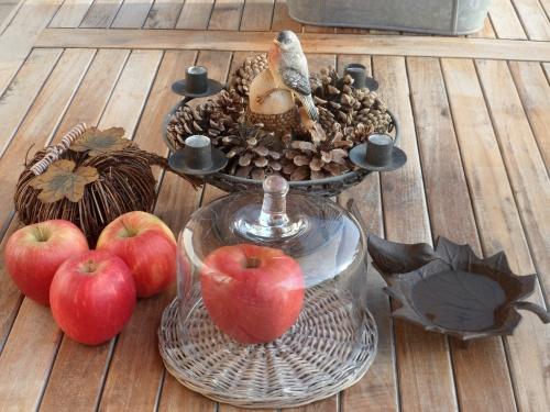Palette d'automne au jardin