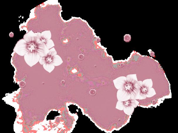 Fleurs Diverses (24)
