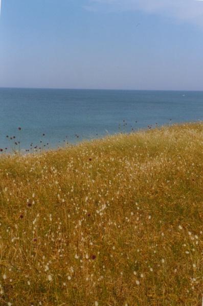 L'océan depuis l'Île de Ré, juin 2005