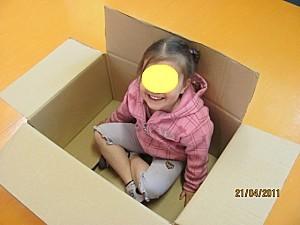 Cartons-3372