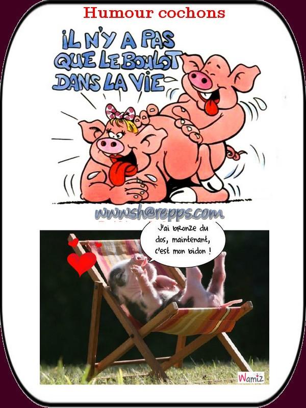 humour cochon