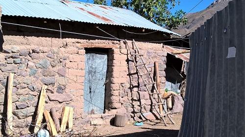 Découverte de la vie dans le canyon de Colca