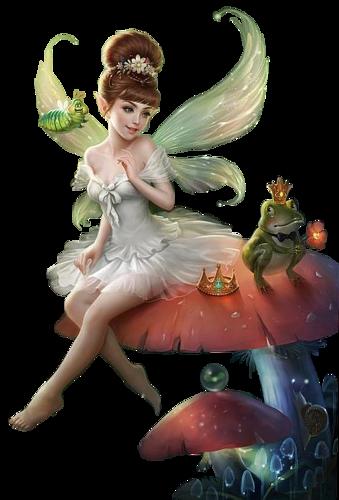 Fées - Elfes Série 15