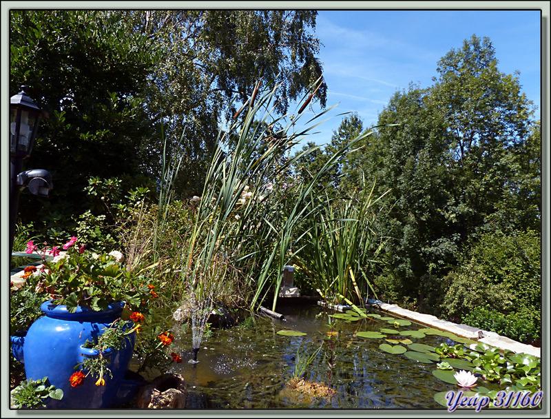Bassin à poissons en ce début septembre - lartigau - Milhas - 31