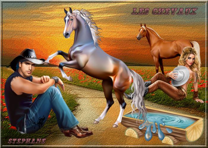 """Défi n°7""""Les chevaux"""""""