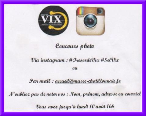 """Un concours photo """"les Grecs chez la Dame de Vix"""" a eu lieu au Musée du Pays Châtillonnais"""