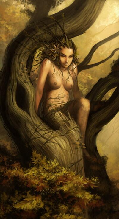 Le chêne à la vierge ... !!!
