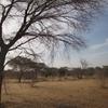 Mauritanie Route de l'Espoir Deuxième bivouac du soir