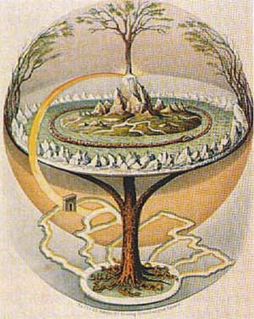 Le frêne commun Yggdrasil