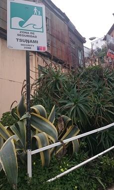 alerte au tsunami