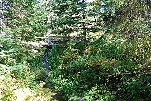 Les jardins de Métis - Québec002