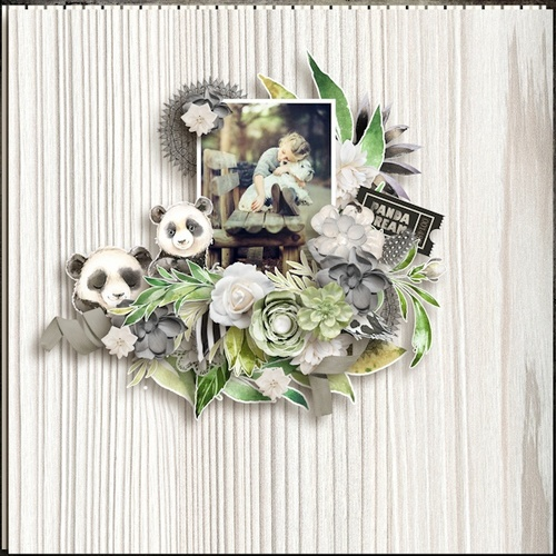 CT de Ilonka's Scrapbook Designs