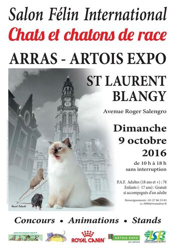 Expositions d'Octobre :