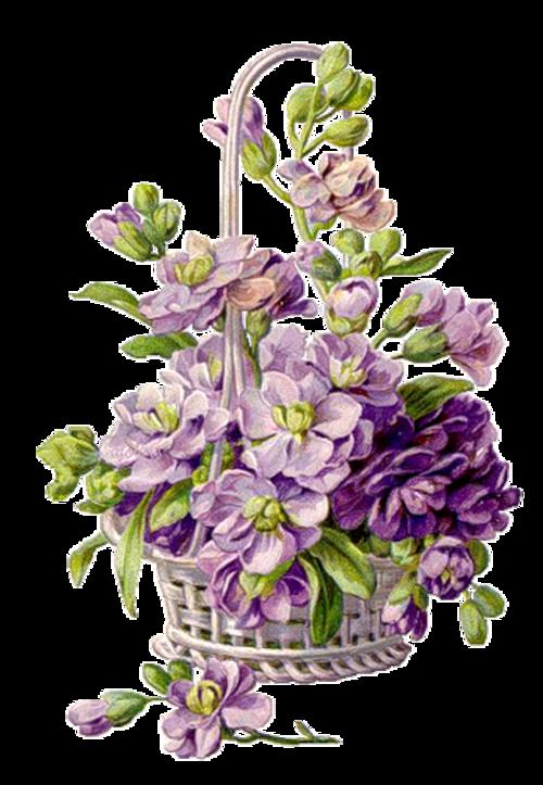 Fleur vintage 2