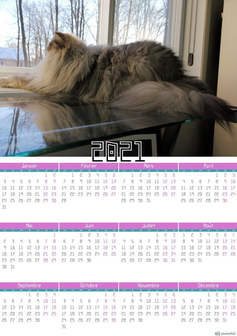 Calendrier du mois de janvier 2021
