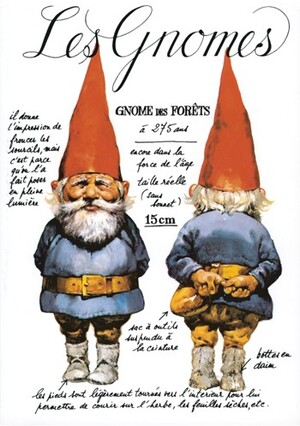 Les gnomes / Wil Huygen & Rien Poortvielt