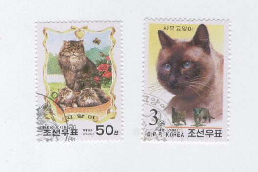 Chats-Coree-du-Nord-2000-2002.jpg