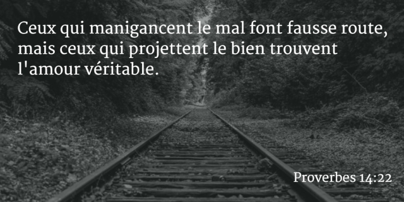 Proverbes 14:22